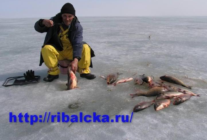 рыбы с рыбалки весной