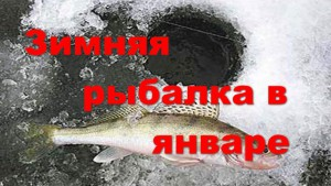 Зимняя рыбалка в январе, рыбалка в январе видео