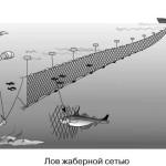 Сети для рыбалки