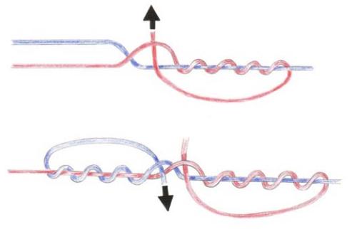 узел для соединения монолески и плетенки