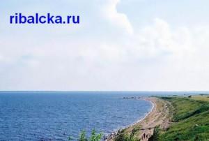 Рыбалка на Ильмене, озеро Ильмень рыбалка