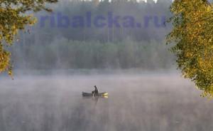 Рыбалка в ноябре, ловля рыбы в ноябре