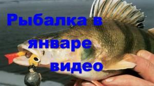 Рыбалка в январе видео