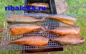Рыба на костре, готовим на природе, запеченная рыба