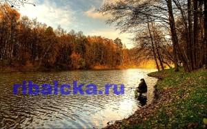 ловля рыбы осенью