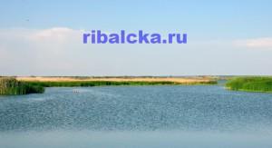 озеро Ильмень рыбалка